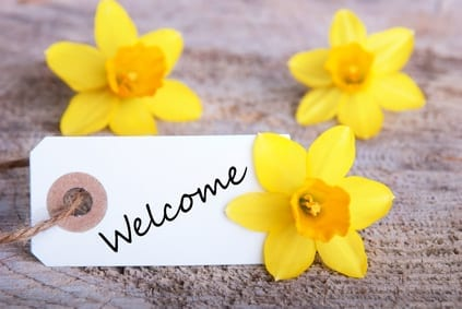 A Banner with Welcome and Yellow Narcissus in the Background